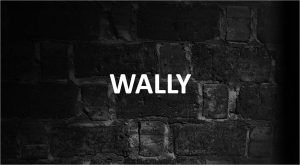 Significado de Wally