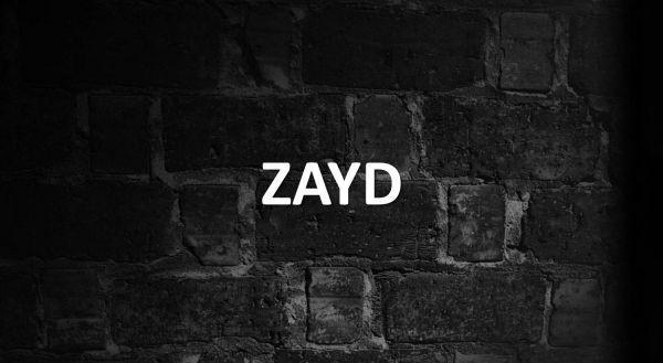 Significado de Zayd
